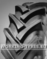 Tractor Tyres Diagonal - Continental AS Farmer 230/70-16 (9.0/75-16) 10PR 119A8 TL